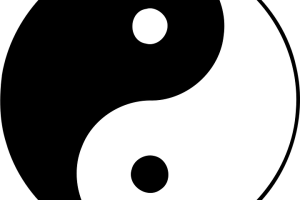 jin jang 1